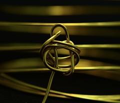 wire (giancarlo_darrigo) Tags: wire macromondays hmm