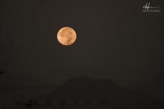 :) (hphotowork) Tags: sunrise lunar moon moonlight moonrise moonset esa nasa longexposureay natural dolunay space theend moonoftheday earthfocus moonawards lunate nightskyphotography astrophotography moonlovers nightsky lunarphotography luna kayseri nikond7500 turkiye turkey