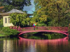 Shugborough Estate (seantindale) Tags: shugborough nationaltrust staffordshire england bridge autumn coulourful reflection waterrefection water olympus omdem1markii umbrella ngc