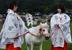 八王子流鏑馬 Hachioji Equestrian Archery 01 (ashleybrownpix) Tags: japan horse archery traditional costume