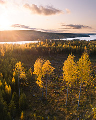 Flight (laurilehtophotography) Tags: laukaa centralfinland finland suomi autumn fall syksy landscape nature hill forest trees sunset outdoor amazing europe mavic pro dji fc220 clouds evening photography moody shadows light
