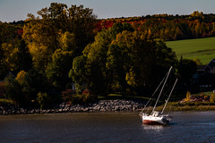 Wrecked (langdon10) Tags: autumn canada countryside quebec stlawrenceriver water fallcolours leaves sailboat shoreline wreck