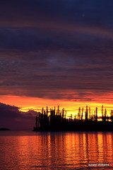 Good Evening Friends of the World(s) and Beyond with LOVE and LIGHT IMG_0326 (iezalel7williams) Tags: sunset sea nature seascape photography clouds colorful high energy silhouette pinetrees reflection newcaledonia beautiful photo isleofpines planetearth paradise purple pink pacific travel tropical bythesea yellow orange light love blue beauty cloudy vibration black nice naturalplace landscape lovely sky enjoy happylife holidays thinkpositive thankyou canoneos700d beyond friendsoftheworlds good evening