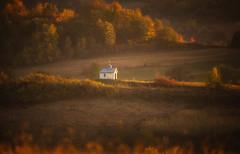 in the evening light (proffkom_) Tags: evening light autumn color ukraine bukovina rural chapel field