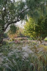 sDSC-8649 (L.Karnas) Tags: donaupark park autumn herbst vienna wien österreich austria 2019 donau danube oktober october