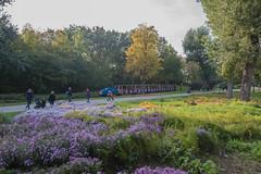 sDSC-8601 (L.Karnas) Tags: donaupark park autumn herbst vienna wien österreich austria 2019 donau danube oktober october