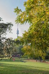sDSC-8592 (L.Karnas) Tags: donaupark park autumn herbst vienna wien österreich austria 2019 donau danube oktober october