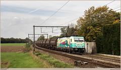 LINΞΛS 186 252-3 @ Maffle (Wouter De Haeck) Tags: belgië belgique belgien infrabel l90 denderleeuw saintghislain hainaut henegouwen maffle ath lineas linξλs br186 bombardier traxx f140ms railpool railcolor railcolordesign modalshift cargo goederentrein freighttrain güterzug traindemarchandise glucose aalst aalstoost neslesomme