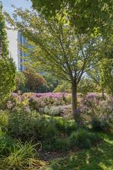 sDSC-8214 (L.Karnas) Tags: donaupark park autumn herbst vienna wien österreich austria 2019 donau danube oktober october