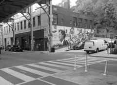 mf035 (DC Film Black and White) Tags: ilford blackandwhite mediumformat film 120 120film manual delta100
