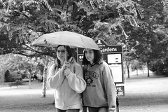 Rainy Days (Bury Gardener) Tags: blackandwhite bw monochrome mono burystedmunds suffolk england eastanglia uk streetphotography street streetcandids snaps strangers candid candids people peoplewatching folks fujixt3 fuji fujifilm abbeygardens