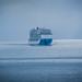 2019 - HAL Alaska Cruise - 26 - Glacier Bay - 1