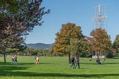 sDSC-8310 (L.Karnas) Tags: donaupark park autumn herbst vienna wien österreich austria 2019 donau danube oktober october