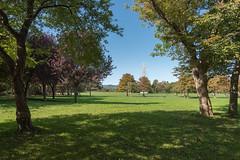 sDSC-8307 (L.Karnas) Tags: donaupark park autumn herbst vienna wien österreich austria 2019 donau danube oktober october
