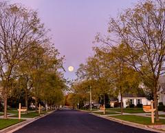 Moonset Down the Street (Mitymous) Tags: dawn doorcreekpark fall2019 fullmoon huntersmoon moonset neighborhood sunrise walk wisconsin