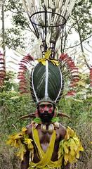 Jimi Beetle heads. Jimbosi Sing Sing Group (gailhampshire) Tags: jimi beetle heads jimbosi sing group paua new guinea