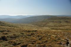Descent to the Glen (steve_whitmarsh) Tags: aberdeenshire scotland scottishhighlands highlands cairngorms tsagairtmor mountain hills carnachoirebhoidheach landscape nature topic