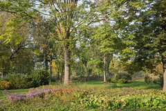 sDSC-8611 (L.Karnas) Tags: donaupark park autumn herbst vienna wien österreich austria 2019 donau danube oktober october