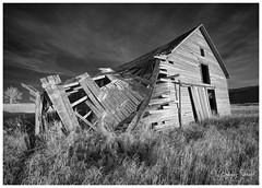 Alberta Prairie Relics (SpacePaparazzi.com) Tags: ir infraredimages infraredglobal bw travelalberta alberta albertatourism prairie relics barn grainelevators httpsspacepaparazzicom canon canon5dmii irix
