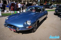 """Motorclassica 2019 Melbroune • <a style=""""font-size:0.8em;"""" href=""""http://www.flickr.com/photos/54523206@N03/48898288208/"""" target=""""_blank"""">View on Flickr</a>"""