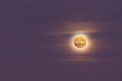 Glowing (lucidreamer50) Tags: moon astronomy october autumn fall sky canon