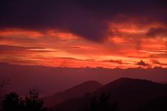 DSC_9669 (griecocathy) Tags: lever soleil ciel nuage montagne sombre lumineux végétations arbre brume noir violet orange beige crème paysage