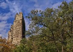 Castle Drachenfels (ruedigerdr49) Tags: castle nature outdoor history ruin building landscape national