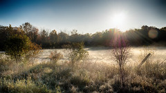 HDR Morning Frost (Classicpixel (Eric Galton) Photography Portfolio) Tags: frost gelée matin morning matinal soleil sun sunrise leverdesoleil champs field trees arbres ciel sky lensflare landscape paysage rosée mist ericgalton classicpixel olympus em5markii automne autumn falls ontario ottawa canada campagne country