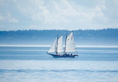"""""""You can never cross the ocean unless you have the courage to lose sight of the shore"""" ~~Christopher Columbus (Irene2727) Tags: boat sailboat schooner water land clouds sky landscape seascape coth5"""