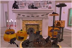 101419-01 (Magnus Vale) Tags: secondlife second life mooh driftwood gacha cute halloween cat kittens kitties dog sl home decor
