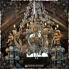 ☩💀 Click link in BIO for our current Kickstarter. 💀☩ ☩💀 Mailing list: https://ift.tt/2lTYHHU 💀☩ . . #SedlecOssuaryProject #KutnaHora #skulls #creepy #UNESCO #church #historical #architecture #historicpreservation #landmark #churcho (Sedlec Ossuary Project) Tags: sedlecossuaryproject sedlec ossuary project sedlecossuary kostnice kutnahora kutna hora prague czechrepublic czech republic czechia churchofbones church bones skeleton skulls humanbones human mementomori memento mori creepy travel macabre death dark historical architecture historicpreservation historic preservation landmark explore unusual mechanicalwhispers mechanical whispers instagram ifttt