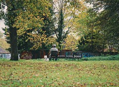 ..when the leaves come falling down (erlingraahede) Tags: autumn bedifferent vsco canon man schleswig germany bench dog alone melancholic