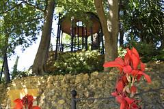 Un pequeño lugar escondido (Ismael Owen Sullivan) Tags: d5300 digital nikon nature naturaleza natural photography españa europa europe spain sevilla seville colors colores turismo traveler travel park paradise paraiso places