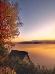 Good Morning (MomoFotografi) Tags: zuiko lacsimon lake mist haze fog brume brouillard lac quebec canada