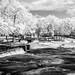 Hurricane Shoals County Park DSCF3561