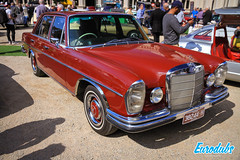 """Motorclassica 2019 Melbroune • <a style=""""font-size:0.8em;"""" href=""""http://www.flickr.com/photos/54523206@N03/48899017307/"""" target=""""_blank"""">View on Flickr</a>"""