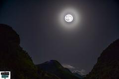 Pleine lune (https://pays-basque-et-bearn.pagexl.com/) Tags: 64 aquitaine arette béarn colinebuch france hautbéarn ciel lune montagne nature nuit sudouest valléedubarétous village étoiles