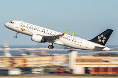 TAP Air Portugal (Star Alliance Livery) / Airbus A320-200N / CS-TVF (duartemanhita spotter) Tags: tap tapairportugal tapportugal transportesaereosportugueses turbine takeoff airport airplane airlines airbus airways airbuslovers airbusneo avião aviation afternoon a320 airbus320 a320200 a320neo airbus320neo airbusa320 neo spotter sunrise sunset depart cockpit commercialflight canon canonaviation cargoflight canondslr canoneos canonphotos canonuser canon6dmarkii views livery speciallivery newlivery new newplane lisbonairport lisbon lppt like planespotter plane photographer photooftheday panning panningefect fly follow followme flytap
