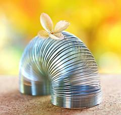 Mini Springer (Through Serena's Lens) Tags: macromondays wire springer mini macro toy dof bokeh flower colorful tabletop