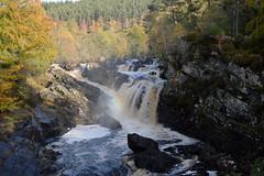More from Rogie Falls (lozinka_gergova) Tags:
