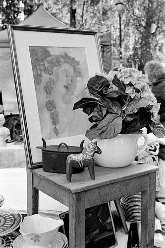 Flea Marked | Kodak Retina IIc