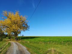13.10.2019 / Rund um Haarbach (sebastianwerba) Tags: sonntagsspaziergang sonnenschein herbst herbsttag 13102019 werba sebastianwerba landkreispassau niederbayern bayern
