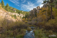 Little Spearfish Canyon (kevin-palmer) Tags: blackhills blackhillsnationalforest fall autumn color colorful foliage october nikond750 morning southdakota littlespearfishcreek flowing water stream savoy spearfishcanyon sunny blue sky tamron2470mmf28 polarizer