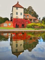 Mallards spoil reflection. (Darren Speak) Tags: reflections rowntreepark autumn ducks york