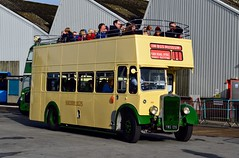 906 YWG109 (FLJ538) (PD3.) Tags: iow bristol ksw ecw 906 ywg 109 open top topper topless isle wight hants hampshire england uk great britain newport godshill quay harbour bus buses museum preserved vintage running day rally autumn sunday 12 13 october 2019 southern vectis flj538 flj 538 ywg109