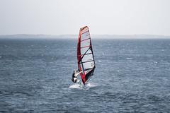 Meschers-sur-Gironde, Charente-Maritime, France (o.mabelly) Tags: sony a7rii carl zeiss contax yashica ilce7rm2 novoflex cy france alpha contaxyashica a7rm2 a7 ilce europe f4 teletessar tele tessar 300mm mer sea format plein ff frame full 7rm2 charentemaritime mescherssurgironde merschers gironde planche voile véliplanchiste sailbord windsurfing