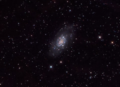 NGC2403 (teredura58) Tags: ngc2403 astrophotography astrofotografia rc6 ieq45pro ioptron alava astrometrydotnet:id=nova3682048 astrometrydotnet:status=solved