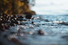 Water Bokeh (thedrowsy) Tags: sweden nature landscape water sjö lake vattudalen strömsund jämtland norrland sverige a7riii sony alpha mark iii mkiii outdoors outdoorsy scandinavia 85mm