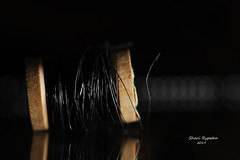 075 (3) (WS) Spooled Wire (srypstra) Tags: wire macromondays sherirypstra lowkey