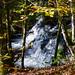 Wasserfall im Tal des Dreisams